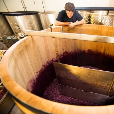 Jeff Pisoni observes a fermentation tank of Pinot Noir. Observation by taste, smell and sight are important in winemaking