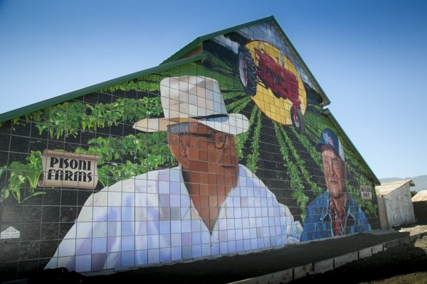 Barn with a mural of the Pisonis