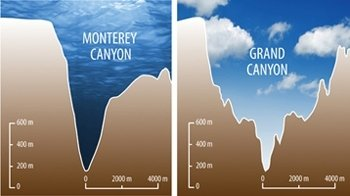 Diagram with the depths of Monterey Canyon