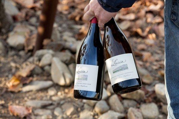 Lucia wine bottles