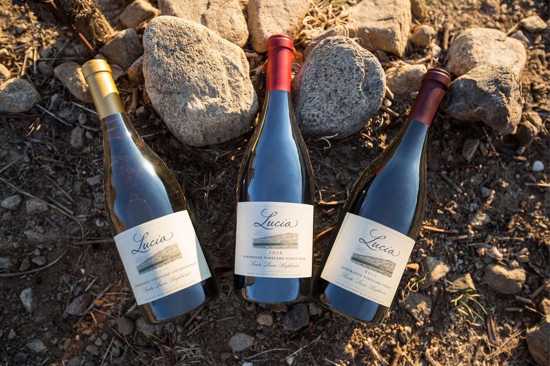 Lucia wine bottle trio