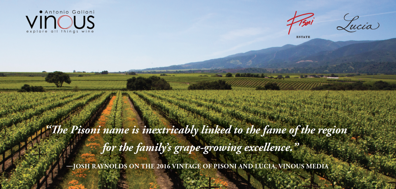 Vinous Media Review from Josh Raynolds
