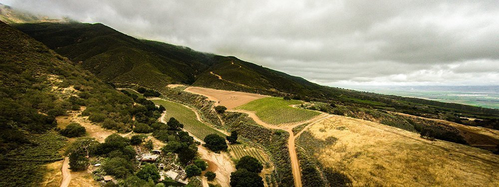 Pisoni Family Vineyards aerial view