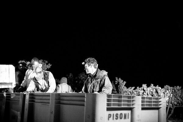 Mark Pisoni during night harvest