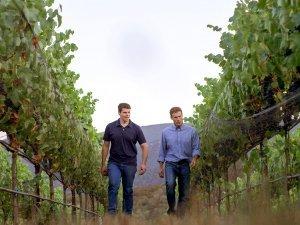 Jeff Pisoni and Mark Pisoni walking between rows at Pisoni vineyard